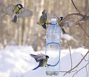 Птицы в вашем саду - хорошее подспорье в борьбе с вредителями